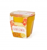 Bamboo Bio Pot - SUNFLOWER