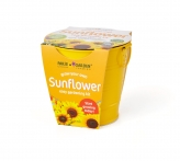 Round Zinc Planter - SUNFLOWER